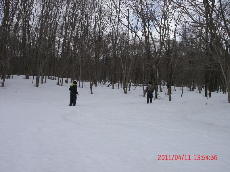 2011年岩木山春スキー 84
