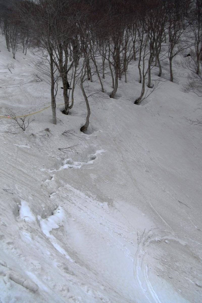 2011年岩木山春スキー 128