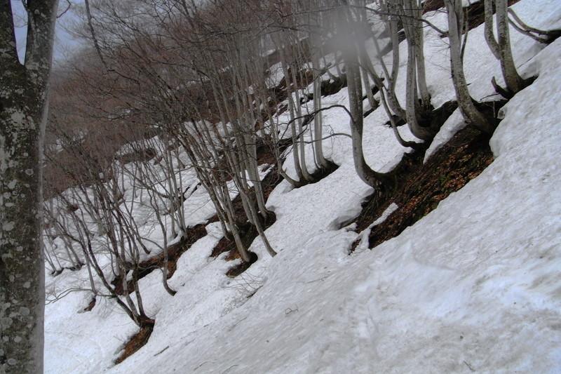 2011年岩木山春スキー 141