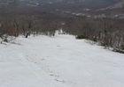 2008年岩木山春スキー 8