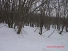 2011年岩木山春スキー 86