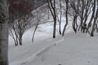 2011年岩木山春スキー 119