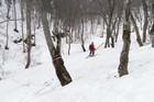 2011年岩木山春スキー 137